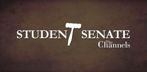 Student senate election results delayed until after spring break