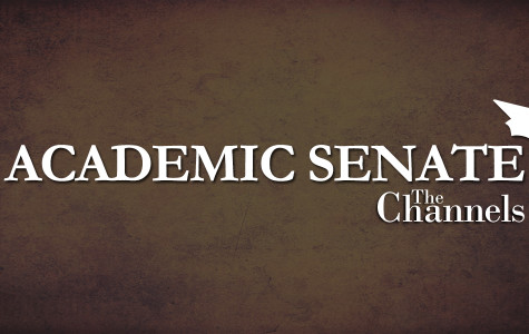 Senate discusses students doing faculty evaluations online in fall