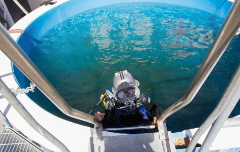 SBCC dives into Cal Poly Pier maintenance opportunity