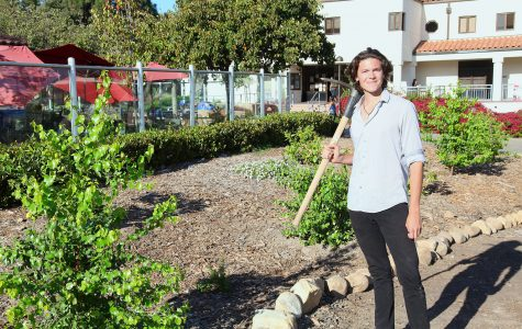 Latest project of sustainability club brings fruit trees to SBCC