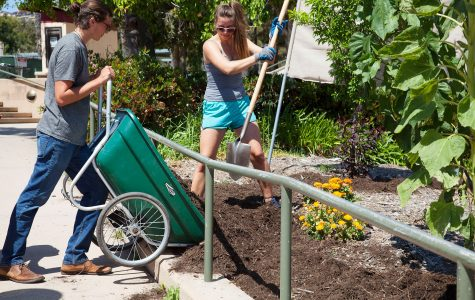 Students volunteer to help the Permaculture Garden bloom