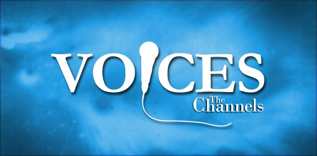 Voices: Which animal would you choose to represent the Democratic and Republican party?
