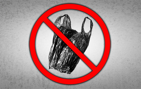 Ban on plastic bags should survive lawsuit, SBCC experts say