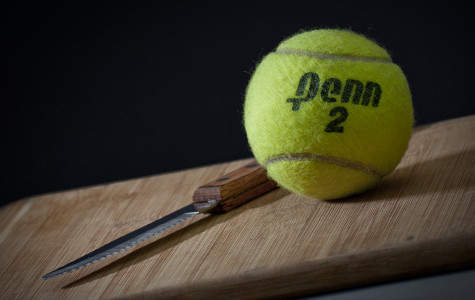 Men's tennis to be suspended