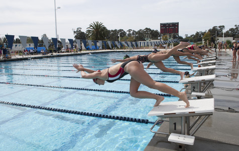Women's swimming dives into City College athletics history