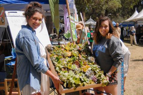 City College students Marisa Merola (left) and Sofia Silva display a sample of a green wall they are building in their Environmental Studies class,