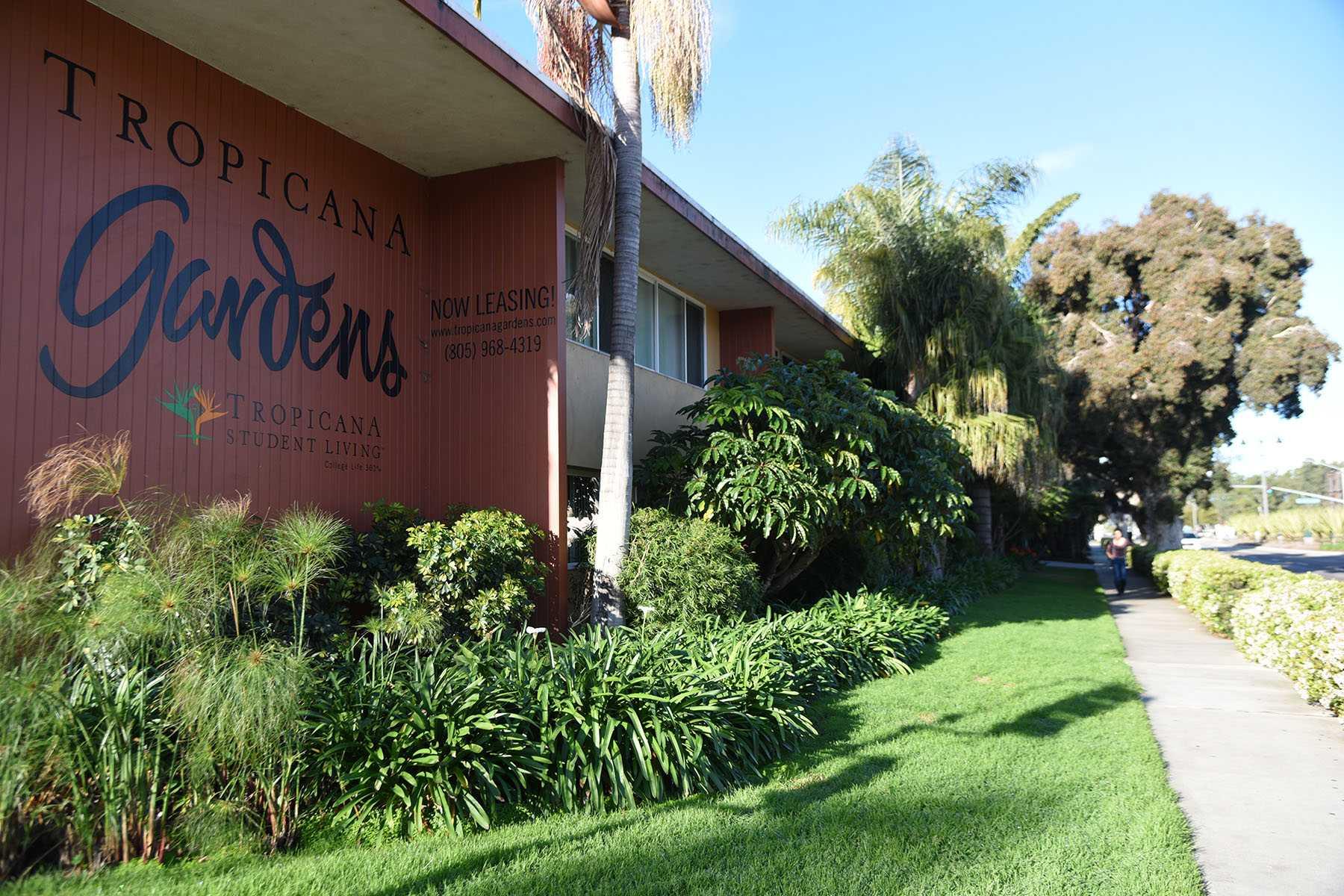 Tropicana Gardens Isla Vista Pricing Garden Ftempo