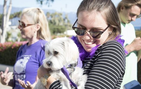 Student Nathalie Bergstroem holds Molly, a therapy dog, in front of the Luria Library on Tuesday, Nov. 29, at City College. Bergstroem had a special connection with Molly and was reluctant to set her down.