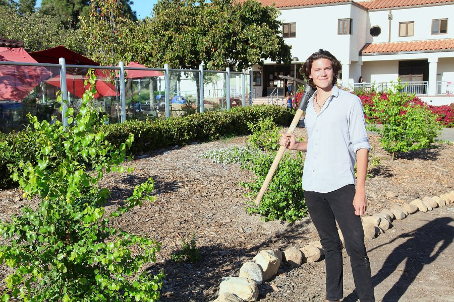 Jackson Hayes, student sustainability coalition president, stands in front of a new garden on Tuesday, Nov. 15, outside the City College West Campus Cafeteria. The gardens are made to make a more sustainable campus.