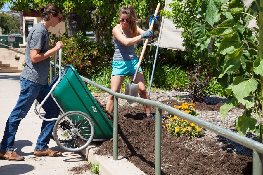 From left, Jackson Hayes and Nicole Wegrzyniak work together in the Permaculture Garden on Friday, April 21, on West Campus near the Business Communication Building. Hayes and Wegrzyniak are both members of the Sustainability club.