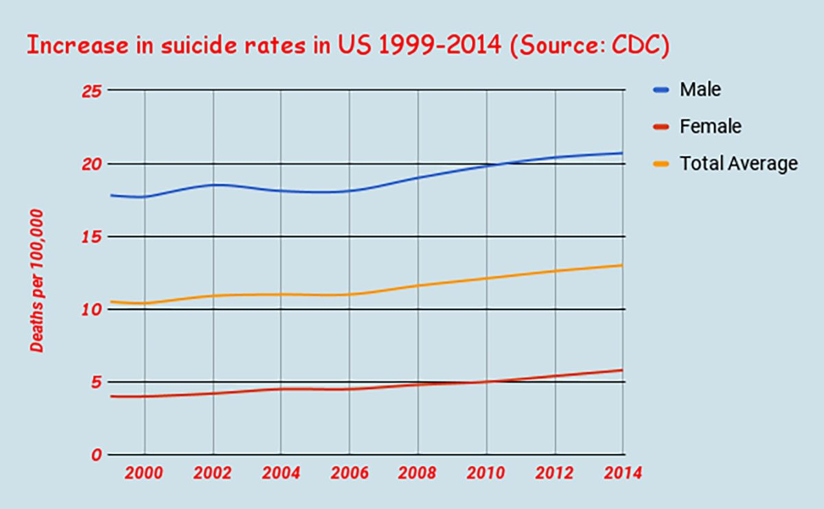 Increase in suicide rates in the United States from 1999 to 2014. Suicide rates have had a greater pace of increase since 2006. (Source: CDC)