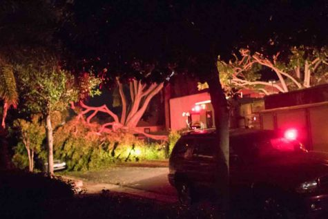 Collapsed tree that caused a transformer to blow out, one injury and displaced an entire apartment complex early Tuesday morning, Sept. 5, 2017 in Santa Barbara, Calif. The incident caused a power outage that affected Santa Barbara City College and nearby neighborhoods