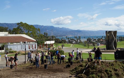 New food and pollination gardens planted at SBCC
