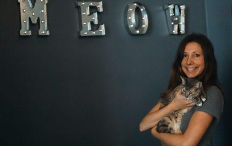 "Santa Barbara's ""cat cafe"" offers alternative study experience"