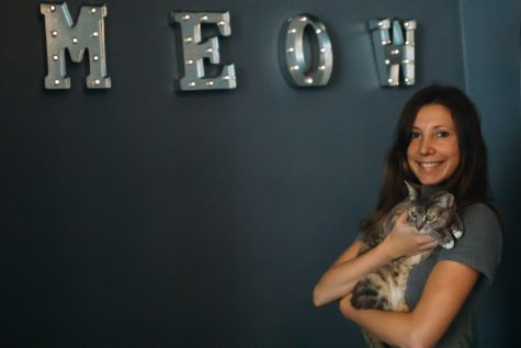 "Santa Barbara's ""cat cafe"" offers alternative study experience"