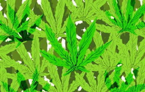 Marijuana dispensaries thrive in SB as cannabis becomes mainstream
