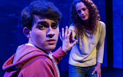 Daniel Sabraw and Clare Carey in the Theatre Group production of The Curious Incident of the Dog in the Night-Time.