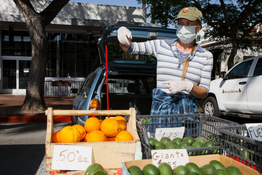 Juliana Bertelsen sells avocados, oranges and rhubarb as her main source of income during the pandemic after loosing her job as a massage therapist, Tuesday, April 21 2020 in Downtown Santa Barbara, Calif.