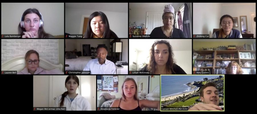 City College's Fall 2020 Associated Student Government in a Zoom meeting October 9, 2020.