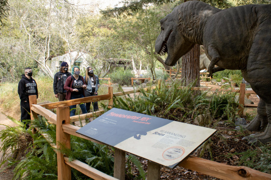 From left, Alex Jimenez, Francisco Guzman, Dylan Otte and Melissa Guajardo feast their eyes upon the terrifyingly accurate Tyrannosaurus rex on March 10, 2021, at the Santa Barbara Museum of Natural History. Otte is a naturalist at the museum and has been working there since 2018, and was giving her friends a private tour around the exhibit while relaying plenty of information and anecdotes throughout.