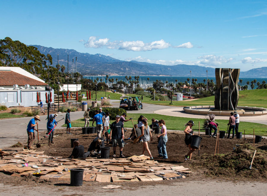 Image courtesy of professor Adam Green. Volunteers work to lay cardboard over dirt and cover it with mulch in a process of improving the soil while building the SBCC Permaculture Garden on October 20, 2017, at City College in Santa Barbara, Calif.