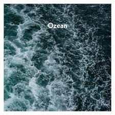 Album art for the 2019 single Ozean by German indie-rock band AnnenMayKantereit.